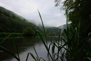 Donau_2