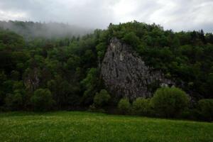 Donau_Fridingen