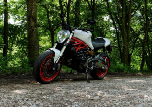 Monster821_wald_1800km